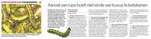 tonTon Buxus in het Eindhovens Dagblad